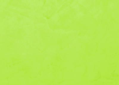 V62 (Lime)